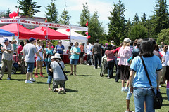 Bellevue Strawberry Festival | Bellevue.com