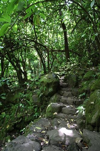 Pipiwai Trail
