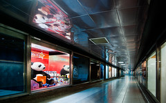Loneliness (mbromberger) Tags: bear italy rome reflection subway advertising children toy sadness panda loneliness play corridor hallway stitched spagna coldness shoppingwindow pentaxk10d pentaxda1645mmf4