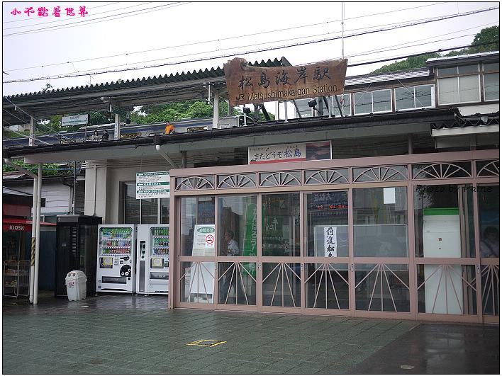 仙台松島遊船餵海鷗-38.jpg