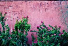 Jardins de la Mnara (cranjam) Tags: streetart wall graffiti bougainvillea morocco marocco marrakech pavilion mura menara qanat menaragardens padiglione saadiangardenpavilion abdalmumin giardinidellamenara jardinsdelamnara