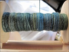 Forest Afternoon handspun, in progress