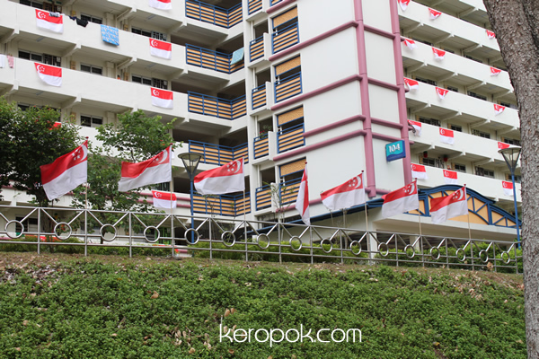 Singaporean irritated by RC members' hanging of flags outside her unit