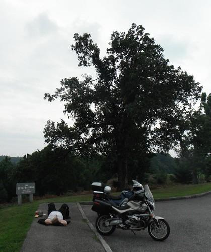 BRP--2011_28