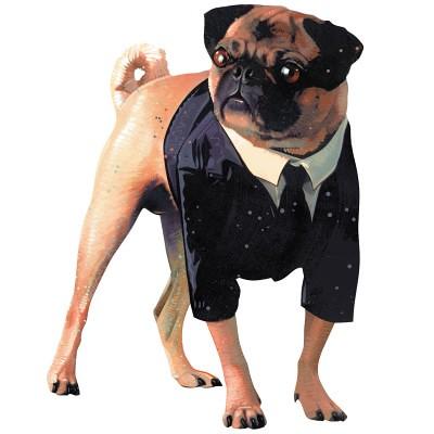 frank-the-pug1