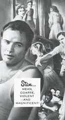 Marlon BRANDO is Stanley (BudCat14/Ross) Tags: 1951 marlonbrando astreetcarnameddesire tennesseewilliams filmversion vinatgefilms