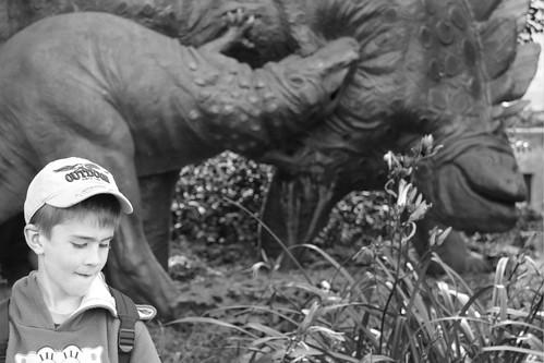 Dinospezialist