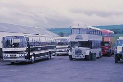 Newtons NSG783 Dingwall (Guy Arab UF) Tags: bus buses bristol s m 1956 newton dingwall ecw rossshire lodekka highlandomnibuses scottishomnibuses ld6g nsg783 tcs352j wsn144j