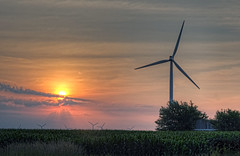 Windmills and corn fields (Biketripper) Tags: corn wind indiana fields mills fowler summer2011