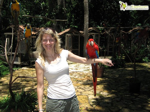 Red Macaw Interactive Center