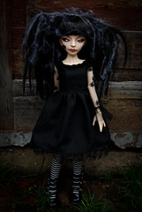 (Morgissa) Tags: dark spider doll ray darkness 14 bjd dollfie msd dollzone
