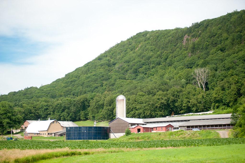 Barstow's Longview Farm, Hadley, MA