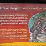 "Lonesome George's Sign <a style=""margin-left:10px; font-size:0.8em;"" href=""http://www.flickr.com/photos/14315427@N00/6009617558/"" target=""_blank"">@flickr</a>"