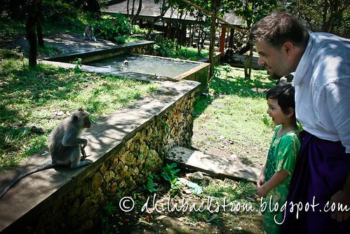 Indonesia_2011-17.jpg