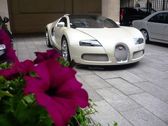 Flower and Bug (BenGPhotos) Tags: pink white flower london car sport beige purple cream grand bugatti supercar spotting 201 w16 veyron hypercar worldcars
