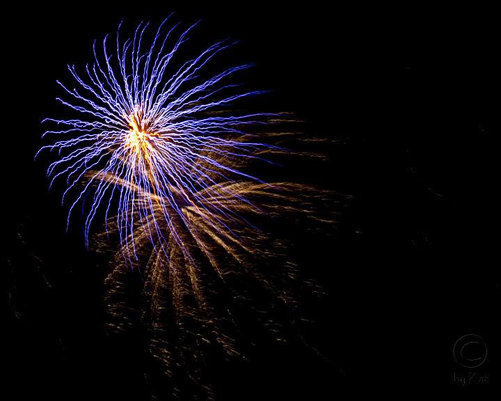 webroydaysfireworks3