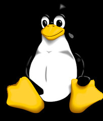 How to install and configure VSFTPD linux