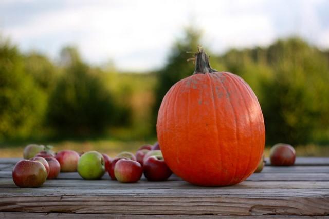 Calabaza y manzanas