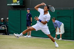 Jo Tsonga (WeAreTennis) Tags: wimb crazymonday wimbly grasstennis lundidefolie grandchelme