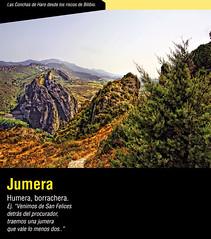 Jumera (Daniel del Castillo para Hola 2011) Tags: haro jumera