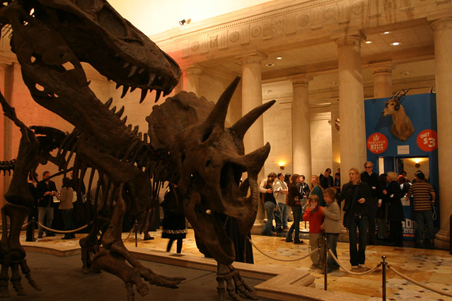 Dueling Dinos in the Grand Foyer