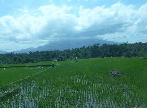 Lombok-Mataram (24)