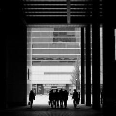 (shigzeo) Tags: street travel friends people bw silhouette 50mm blackwhite nikon business seoul 50 southkorea coex    2011  nikond200 samseongstation nikkor5014g