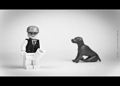 190/365 me and my Black Labrador (photography.andreas) Tags: black macro canon germany deutschland photography lab labrador lego series 365 minifig minifigs saarland minifigure schwarzer project365 httpcreativecommonsorg eos40d canoneos40d canonefs1855mmf3556is urweiler httpphotographyproject365wordpresscom