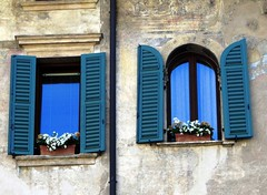 Verona (Graa Vargas) Tags: italy flower window verona itlia graavargas 2011graavargasallrightsreserved 10302150812