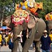 Desfile do festival