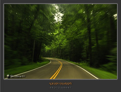 DRIVING MOTION (ADHAM HAWRAMY) Tags: street longexposure trip travel trees summer vacation usa motion blur mountains colors car forest nikon highway driving tennessee paths roads gatlinburg hoya greatsmokymountainsnationalpark d90 nikkor18200mm flickraward nikonflickraward mygearandme hoyacplfilters