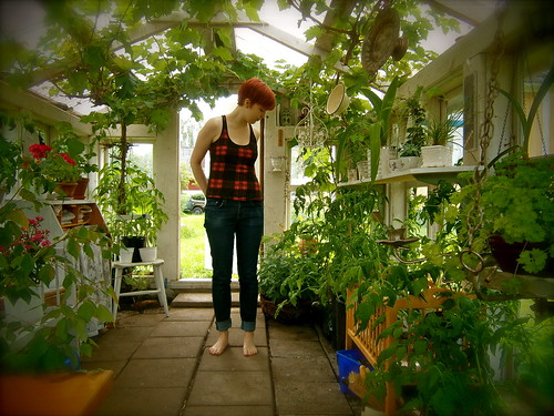 in the green house