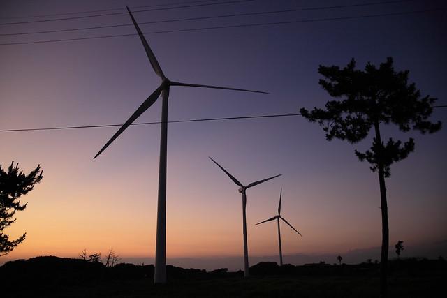 竜洋の風車