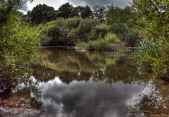 Hidden Lake (Iain A Wanless) Tags: lake landscape dorset hdr poole upton photomatix lightroom3 sonynex