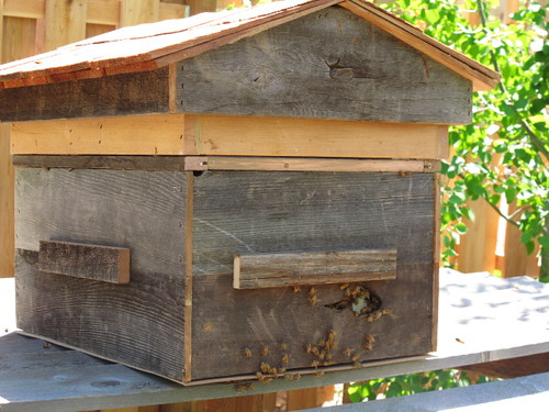 A hive Ross made with recycled wood