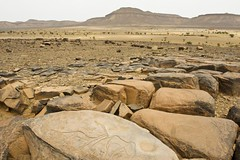 engraving rocks 6.At Ouazik. Maroc (courregesg) Tags: africa art sahara stone architecture pierre maroc marocco sud afrique sahel prehistory geologie the4elements engravingrock