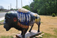 Painted Buffalo outside the Chickasaw National Recreation Visitor Center (J-n-S Pics) Tags: oklahoma chickasawnationalrecreationarea paintedbuffalo nikond90