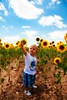 Lucas y su girasol (Jose Casielles) Tags: color retrato flor lucas cielo nubes campo niño girasol yecla fotografíasjcasielles