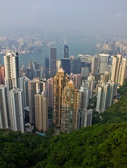 View from Victoria Peak, Hong Kong (Vicky jg) Tags: china city urban forest hongkong bay asia cityscape view harbour vista colourful kowloon viewpoint victoriapeak victoriaharbour travelphotography colourphotography vickyjg vickyjgphotography