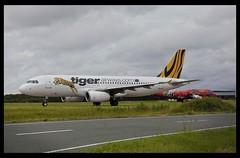 Tiger Airways A320 taxing Brisbane_19=