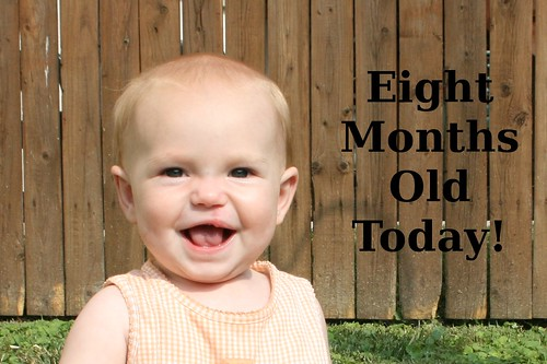 eightmonths