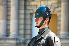Dolmabahce Guard... (SonOfJordan) Tags: travel blur canon turkey eos bokeh guard istanbul motionless dolmabahce xsi 450d