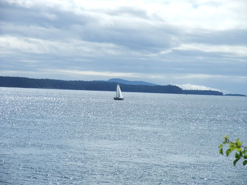 sailboat, Sidney
