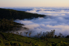 The world sinks into the fog (mari-we) Tags: sunset portugal fog clouds eos madeira 400d