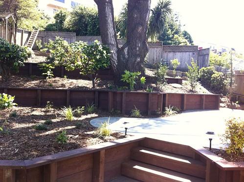 backyard - finished