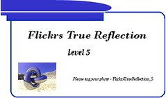 Flickrs True Reflection - Level 5