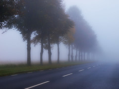 Sunday Morning (Peter Nyhln) Tags: road trees fog landscape sweden country olympus kinna e520 olympuse520 peternyhln mygearandme photoshopelements9 musictomyeyeslevel1