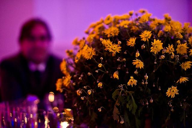 franca wedding215