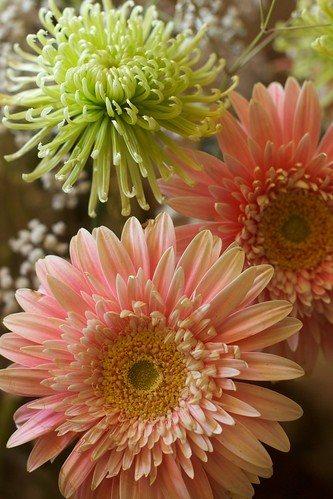 Pink Gerbera and Mum Bouquet