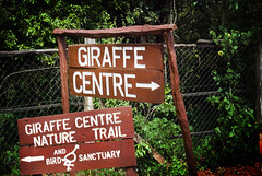 "PhotoFly Travel Club Kenya Safari 2011! • <a style=""font-size:0.8em;"" href=""https://www.flickr.com/photos/56154910@N05/5892905950/"" target=""_blank"">View on Flickr</a>"